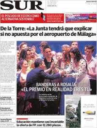 Diario el Sur